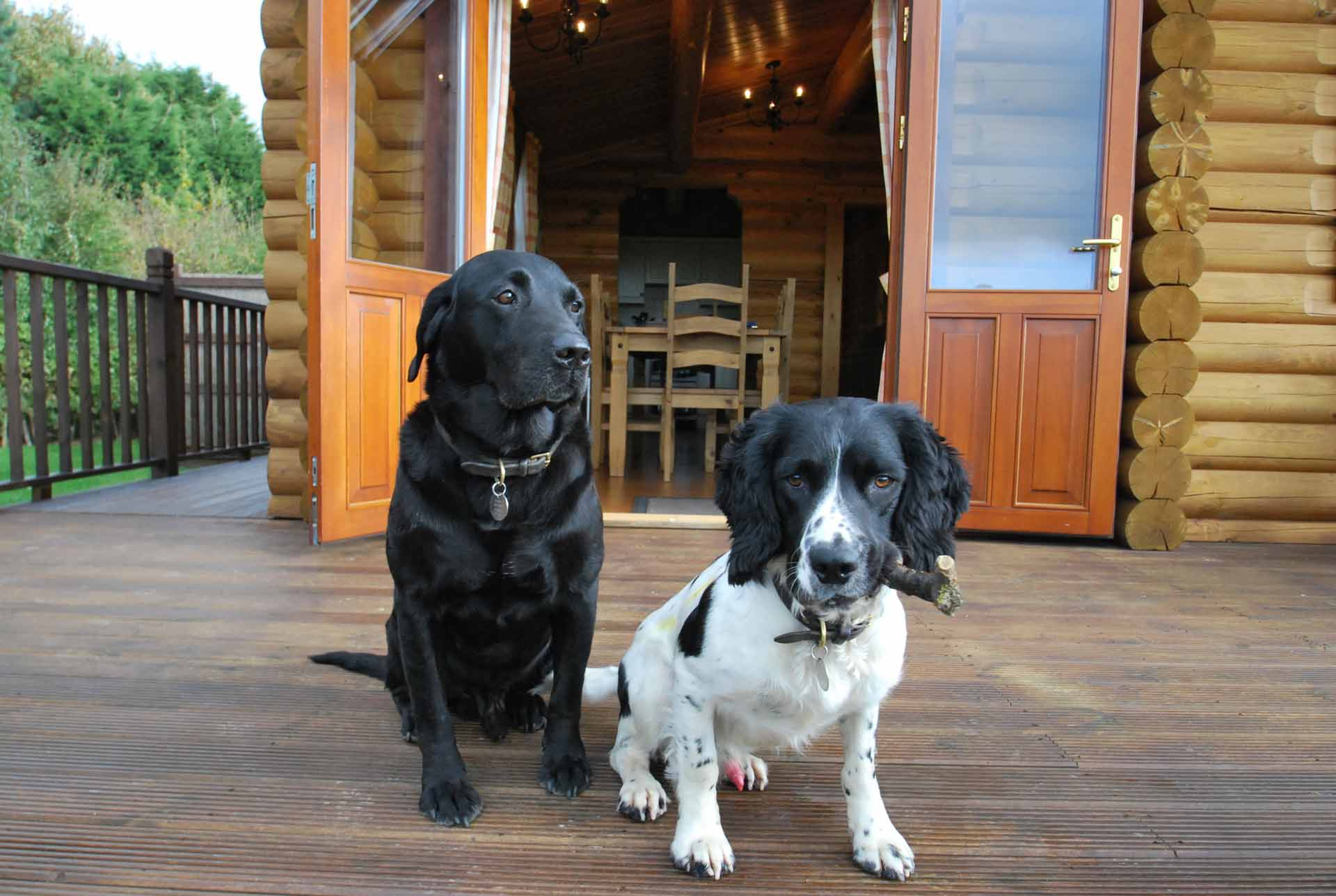 Sycamore-Lodge-Pet-Friendly-Eye-Kettleby-Lakes.jpg