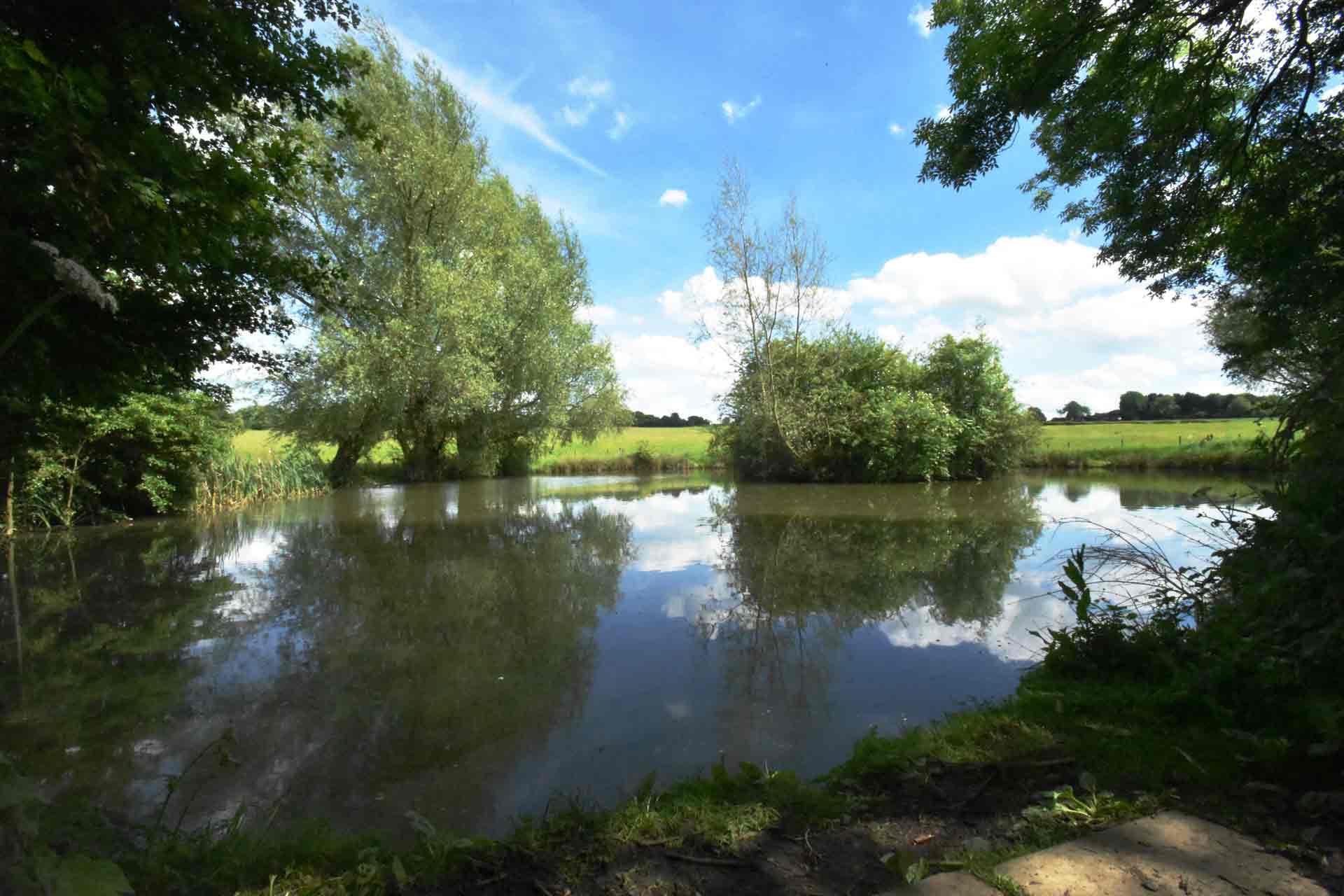 Eye-Kettleby-Lakes-Lake-One-Summer