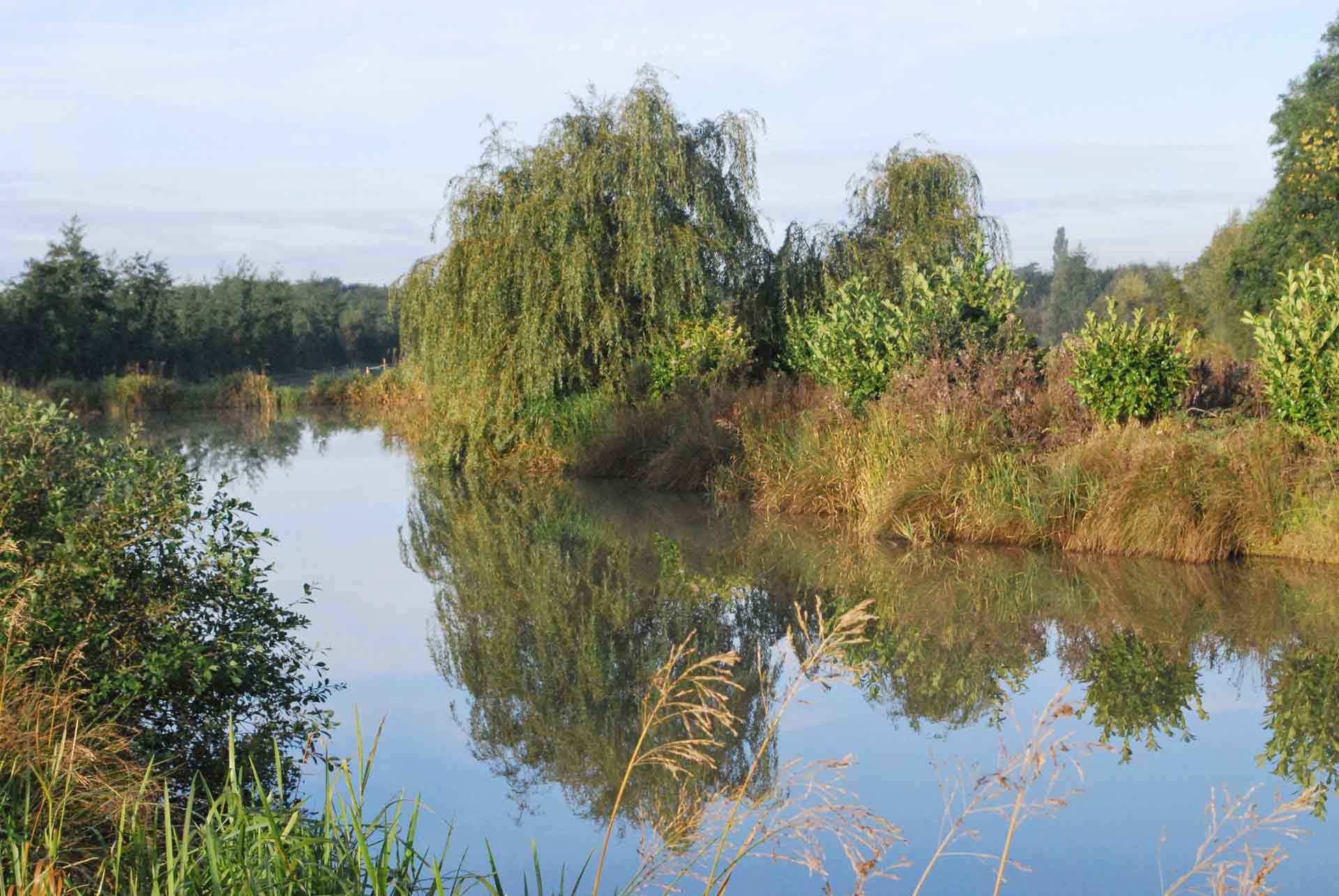 Eye-Kettleby-Lakes-Lake-Six-Island