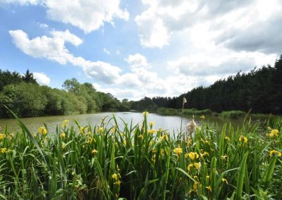 Eye-Kettleby-Lakes-Lake-Three-Summer